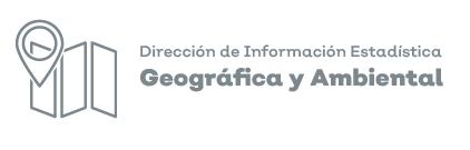 Icono de la dirección de información estadística geográfica y ambiental