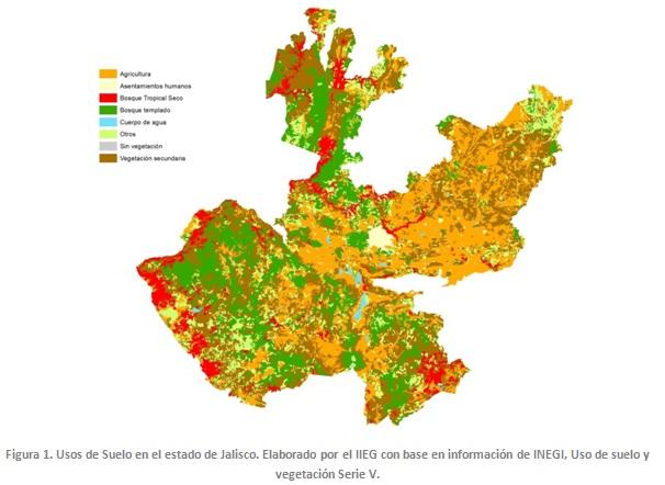 Prioridades de conservaci n de los bosques tropicales en - Mobilifici san marino ...